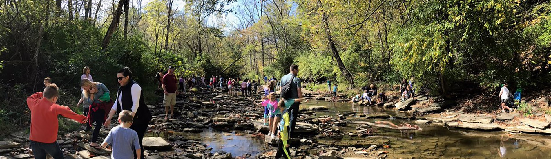 Morgan Students on a mature hike.